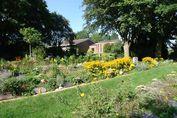 Beete mit Sommerblumen auf dem Friedhof - Copyright: Ev.-Luth. Kirchengemeinde Schwarzenbek