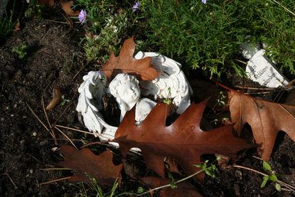 Der Oberköper eines weißen Steinengels mit Flügeln, die ihn links und rechts umranden, liegt im Gras / Ein paar Eichenlaubblätter liegen auf ihm.