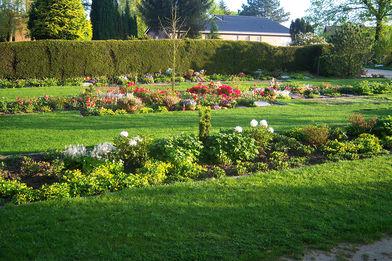 Zwischen grünem Rasen liegen die bepflanzten Gräber
